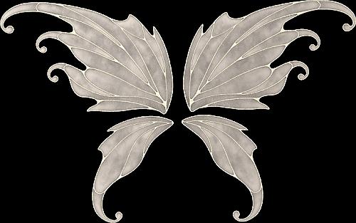 tubes ailes 50574504-1001b84