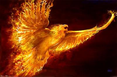 Le Cercle du Phoenix Index du Forum