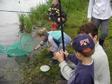 AAPPMA de la Côte d'armor (22) : Apprendre à pêcher ! :les écoles de pêche Etang_neuf-f6a95-81c8c7