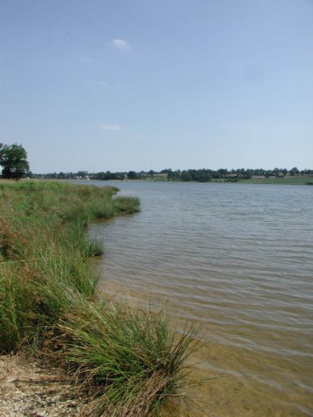 AAPPMA de l'Ille et Vilaine (35) : Meilleurs parcours de pêche dans l'Ille-et-Vilaine Cantache-1-851f5e