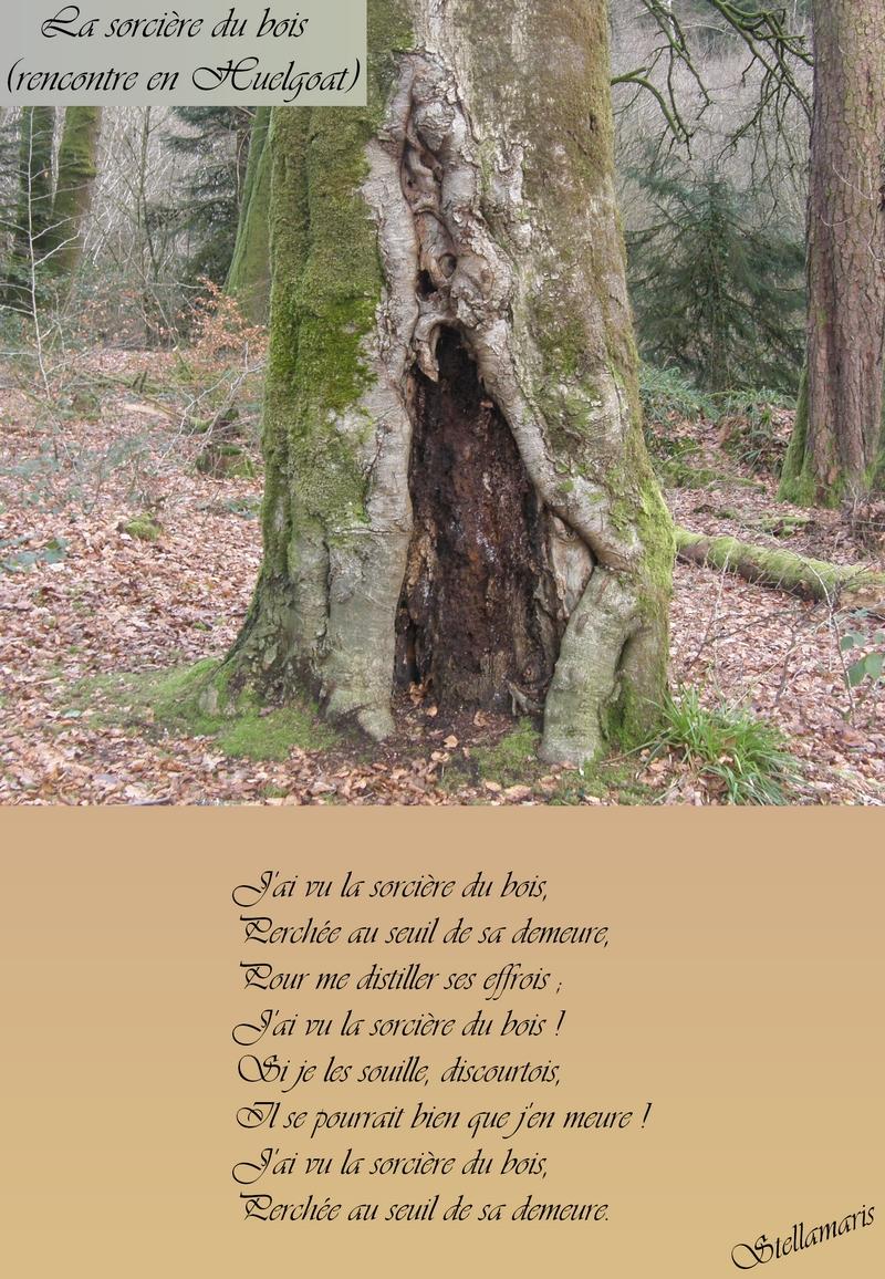 La sorcière du bois (rencontre en Huelgoat) / / J'ai vu la sorcière du bois, / Perchée au seuil de sa demeure, / Pour me distiller ses effrois ; / J'ai vu la sorcière du bois ! / Si je les souille, discourtois, / Il se pourrait bien que j'en meure ! / J'ai vu la sorcière du bois, / Perchée au seuil de sa demeure. / / Stellamaris