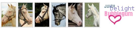 - Question à propos du deuxième cheval (^^) Aga-1cae401