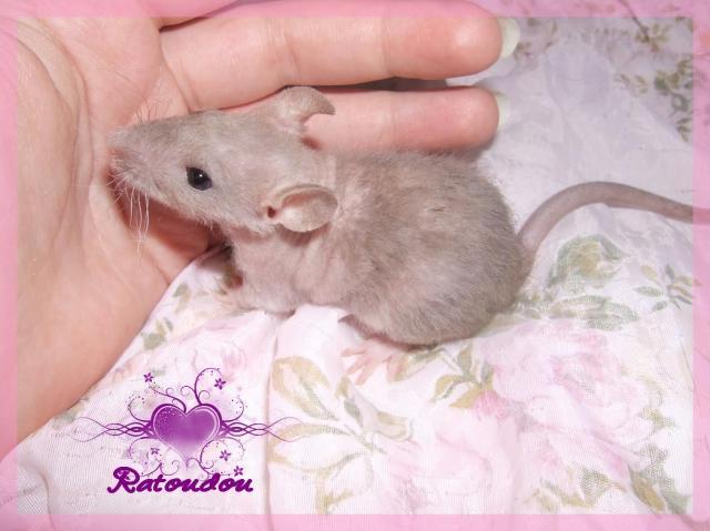 [25] Ma petite Lolita est maman ^^ - Page 2 Dscf5689-10b03f7